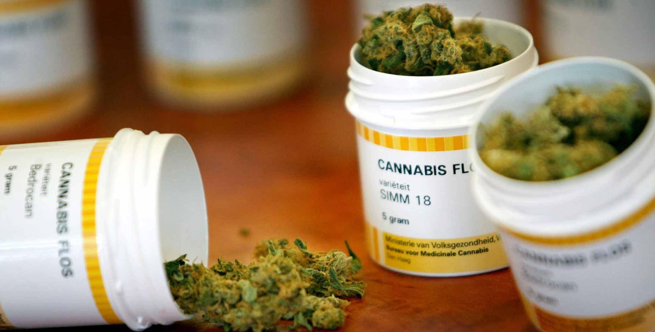 Cannabis thérapeutique : une jeune fille de 8 ans autorisée à l'utiliser