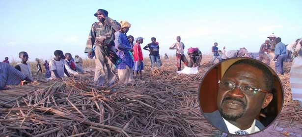Champs de Khelcom : quand l'absence de Papa Abdoulaye SECK irrite à Touba