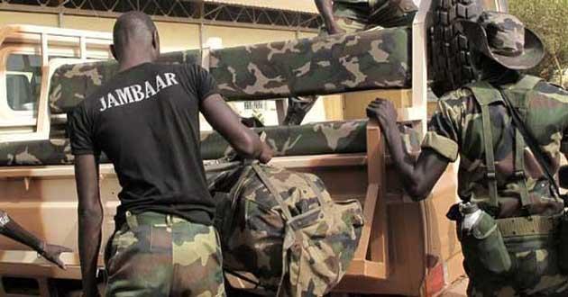 Ziguinchor : l'Armée interpelle deux rebelles et met le feu à des champs de chanvre
