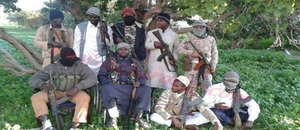 Libye, Syrie: ces cadres «al-Senegali» devenus des «fous d'Allah»