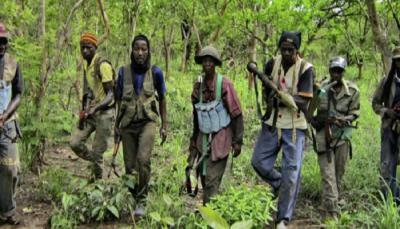 Attaque armée à Goudomp : Un berger tué par balle