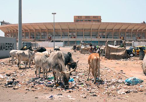 Le Sénégal, la première nation du football africain est sans infrastructures sportives adéquates