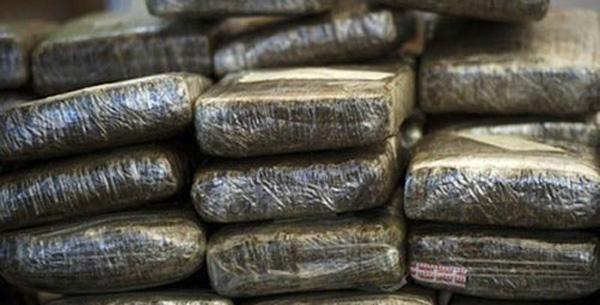 Tambacounda : 915 kg de chanvre indien saisis