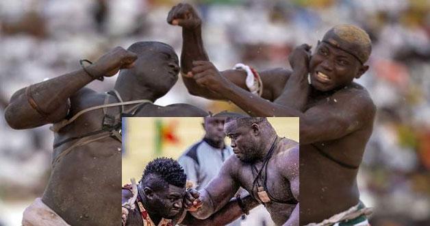 Face-à-face avortés, violence dans l'arène…: Comment les acteurs ternissent l'image de la lutte sénégalaise